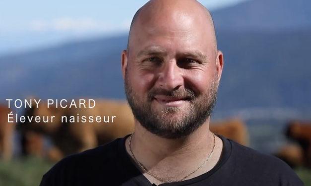 Tony Picard, éleveur Boeuf Pays engagé