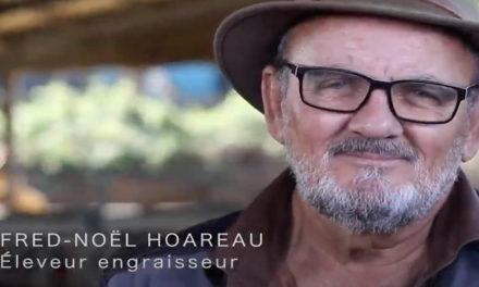 Fred-Noël Hoareau, éleveur Boeuf Pays engagé