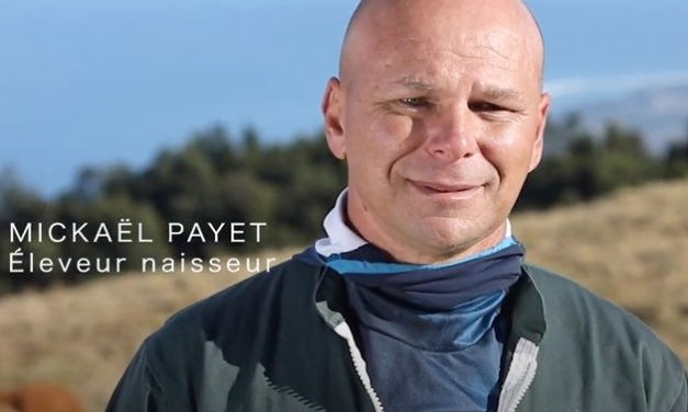 Mickaël Payet, éleveur Boeuf Pays engagé